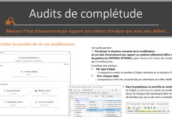 AuditCompletude